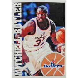 1995-1996 Panini Stickers