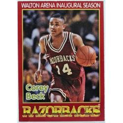 1992 - 1993 Arkansas...