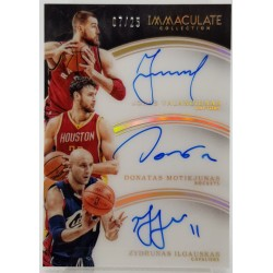 2015-16 Immaculate...