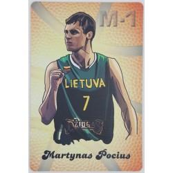2013 M-1 Lietuvos vyrų...