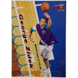1995-96 Topps Gallery -...